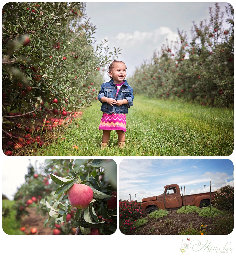 Mau Loa's Midwest Swing | Eckerdts Farm Apple Orchard